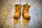 These Boots Were Made For Walking by DonDavisUK