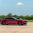 Mustang GT350 by Scott McKellin