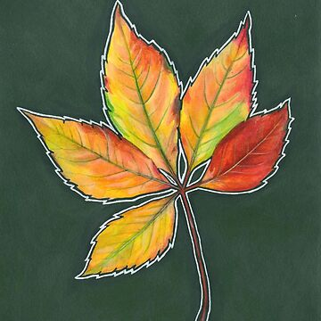 Fall Leaves 1 by brookedonlanart