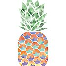 Abstract Pineapple by LeeTowleArt