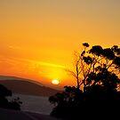 Esperance Sunset by Citrusali