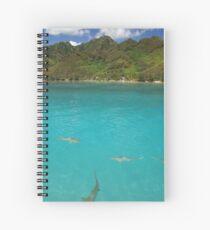 Multiple Black Tip Reef Sharks, Moorea Spiral Notebook
