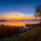 October Morning 13 by Veikko  Suikkanen