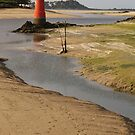 Low Tide, Southern France, Photograph by Vic Potter by Vic Potter