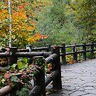 Jozenkei, Sapporo by AnnieD