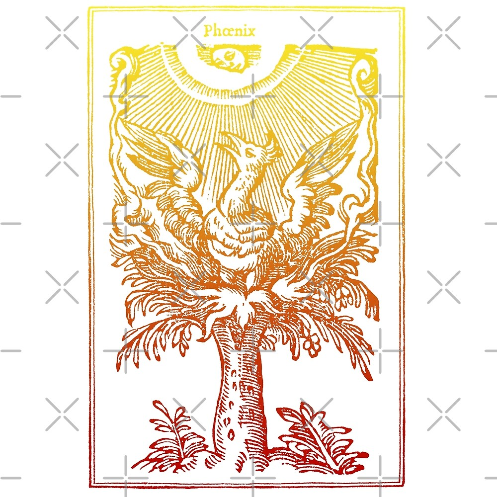 « Phoenix » par emelinepons