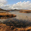 Rannoch Moor Landscape of Scotland by John Kelly Photography (UK)