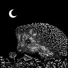 Hedgehog by Moonlight by Hypnogoria