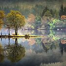 Loch Ard Autumn texture by David Mould
