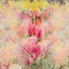 Love by dominiquelandau