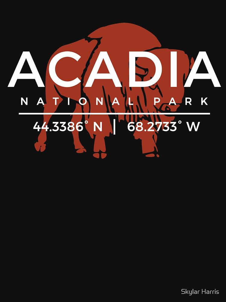 Acadia National Park Vintage Souvenir Maine by fuller-factory