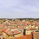 Salon-de-Provence Panorama by msangiemoon