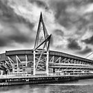 Principality Stadium North View Monochrome by Steve Purnell
