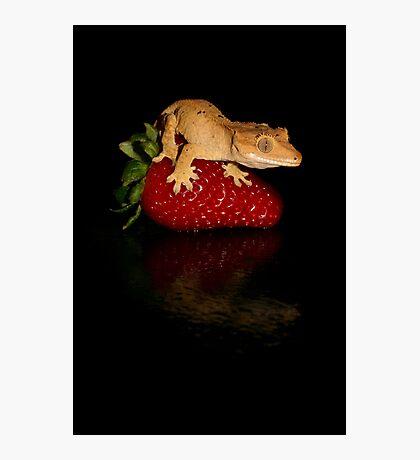 Fruity Photographic Print