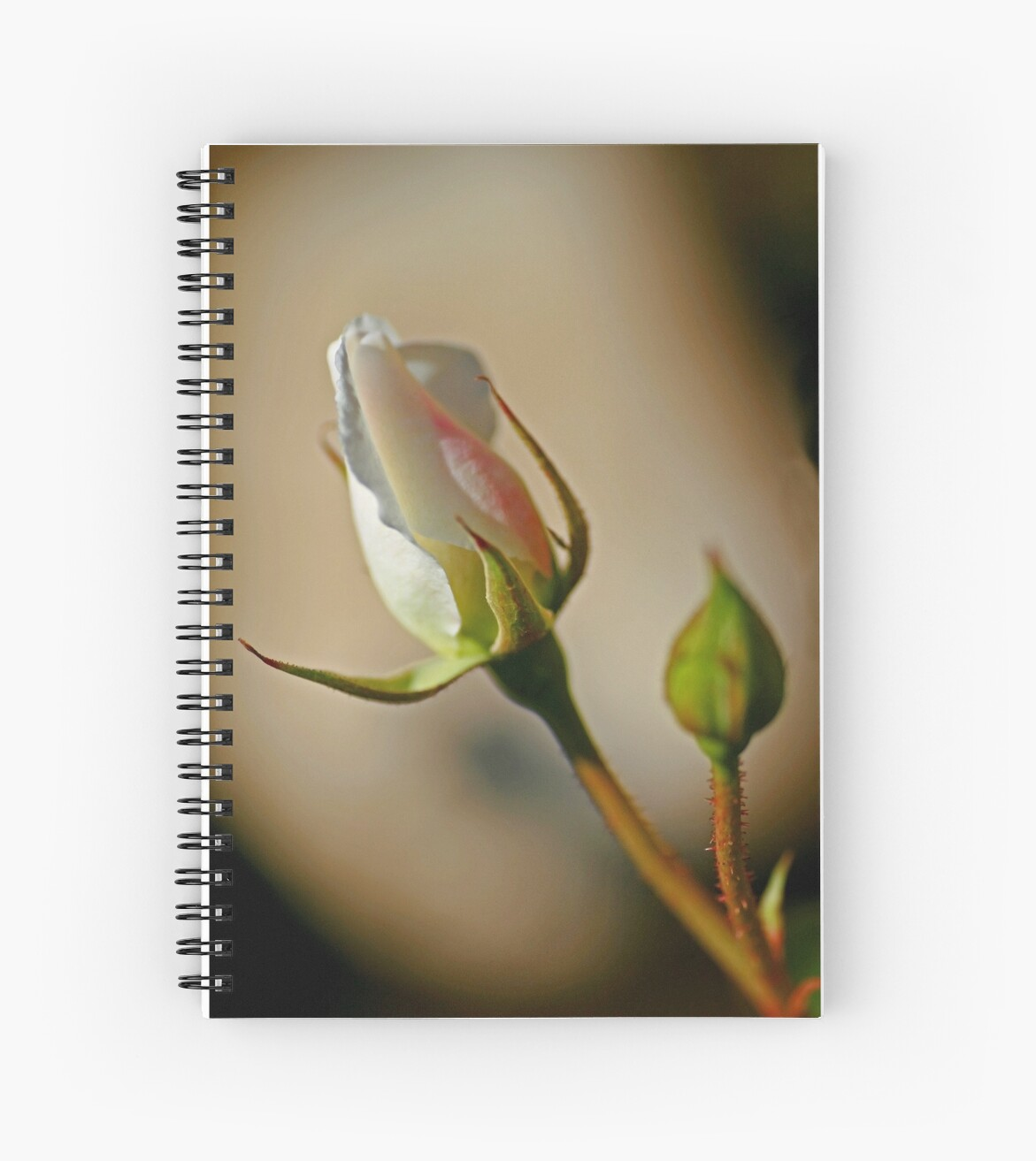 Close Buds by Chet  King