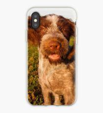 Brown Roan Italian Spinone Puppy Dog In Action iPhone Case