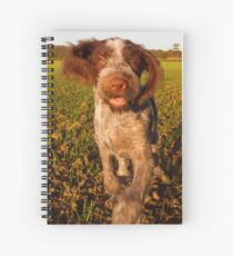 Brown Roan Italian Spinone Puppy Dog In Action Spiral Notebook