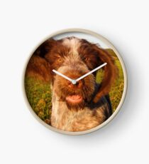 Brown Roan Italian Spinone Puppy Dog In Action Clock