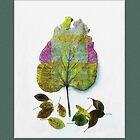 Autumn's Leafy Abundance by Rene Crystal