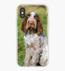 Brown Roan Italian Spinone Puppies iPhone Case