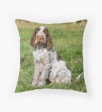 Brown Roan Italian Spinone Puppies Floor Pillow