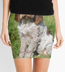 Brown Roan Italian Spinone Puppies Mini Skirt