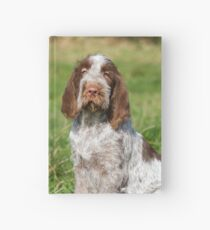 Brown Roan Italian Spinone Puppies Hardcover Journal