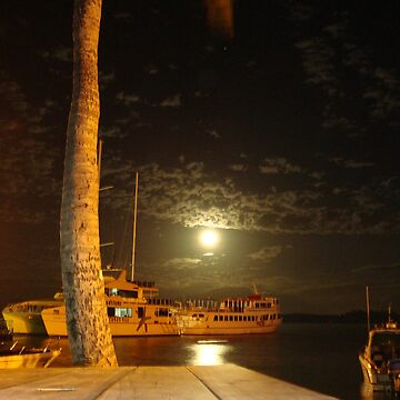 Full moon in Fiji by jpbradshaw