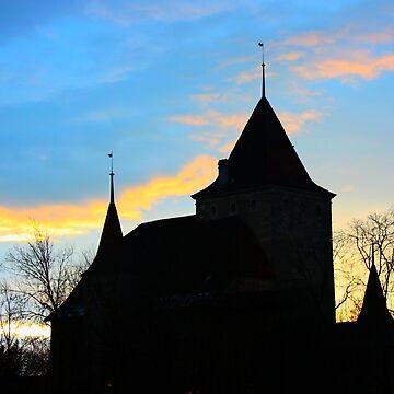 Château de Nidau. Bienne/Biel, Switzerland.  by IgorPozdnyakov