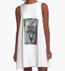 Kangaroo A-Line Dress