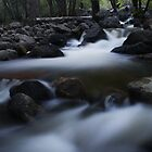 Bridalveil Falls Creek - Yosemite by Adam Bykowski