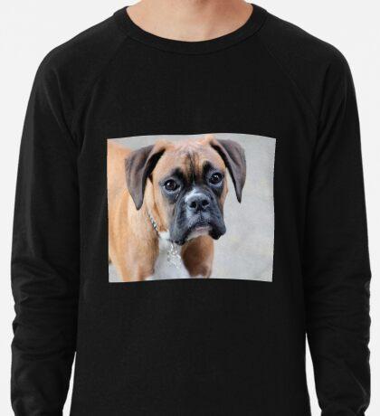 Dino - Ein Boxer Portrait - Boxer Dogs-Serie Leichtes Sweatshirt