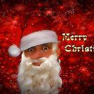 Funny Santa - Merry Christmas by missmoneypenny
