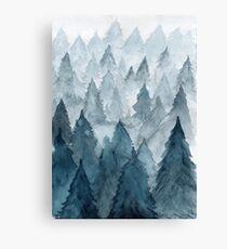 Clear Winter Canvas Print
