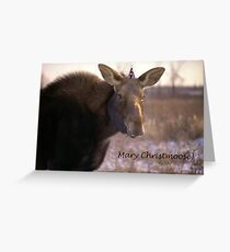 Mary Christmoose Greeting Card