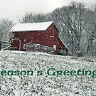 Country Christmas by Bob Hall©