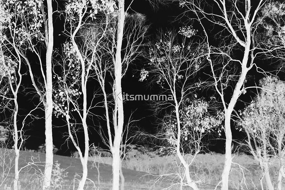 Bush Spirits by Kitsmumma