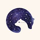 Stellar Love by buko