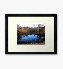 Willow Pond Framed Print