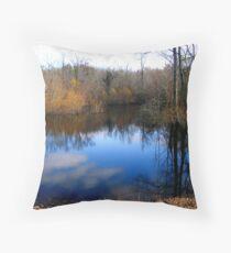 Willow Pond Throw Pillow