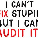 I can't FIX stupid but I can AUDIT it! by jazzydevil