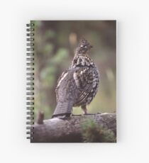 Grouse on Display Spiral Notebook
