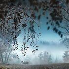 Autumn Frost by Igor Zenin