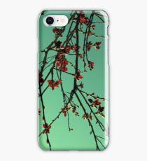 Orientique iPhone Case/Skin