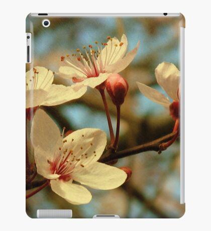 It's Spring iPad Case/Skin