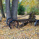 Retired plow by Bob Hortman
