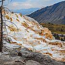 USA. Wyoming. Yellowstone National Park. Geological Wonder. by vadim19