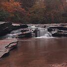 Horseshoe Falls by Bob Hardy