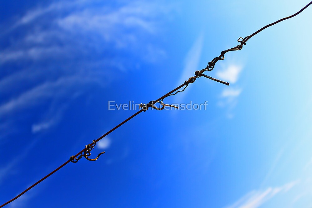 Barbed wire by Evelina Kremsdorf