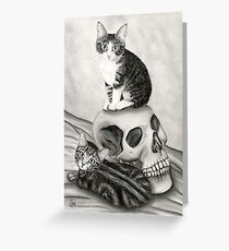 Witch's Kittens Skull Tabby Cats Greeting Card